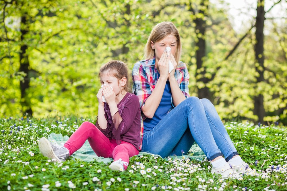 houston allergy symptoms and signs