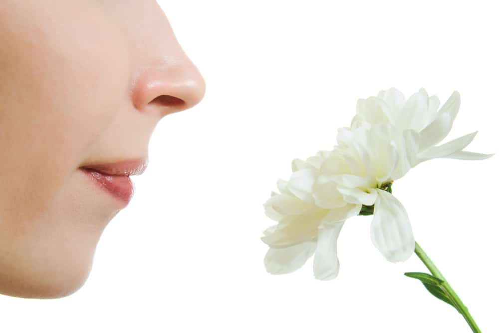 loss of sense of smell