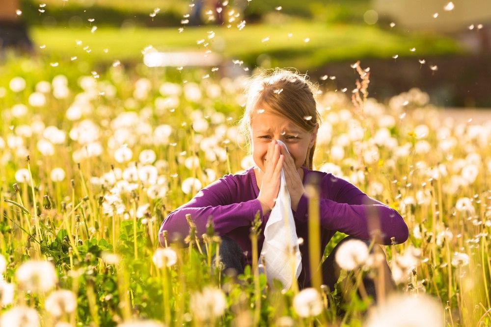what is hay fever in houston.jpg